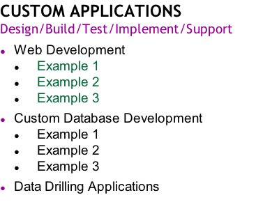CUSTOM APPLICATIONS Design/Build/Test/Implement/Support  Web Development      Example 1      Example 2      Example 3  Custom Database Development 					Example 1      Example 2      Example 3  Data Drilling Applications